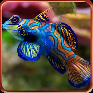 Photo of حمل الان اجمل خلفيات الاسماك الملونة مع تطبيق Aquarium live wallpapers
