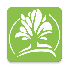 Photo of تطبيق تشجير لتحفيز زراعة الأشجار و معرفة أماكن الأشجار المزروعة من متطوعين آخرين بمدينتك