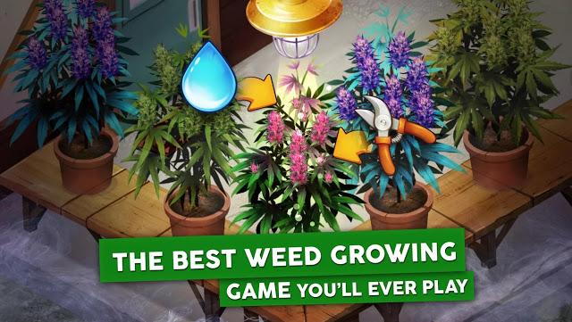 Photo of تحميل لعبة الزراعة Hempire Weed Growing Game للاندرويد