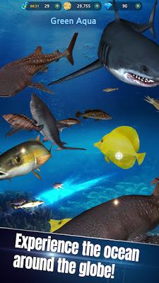 Photo of تحميل لعبة الصيد Monster Fishing 2019 للاندرويد